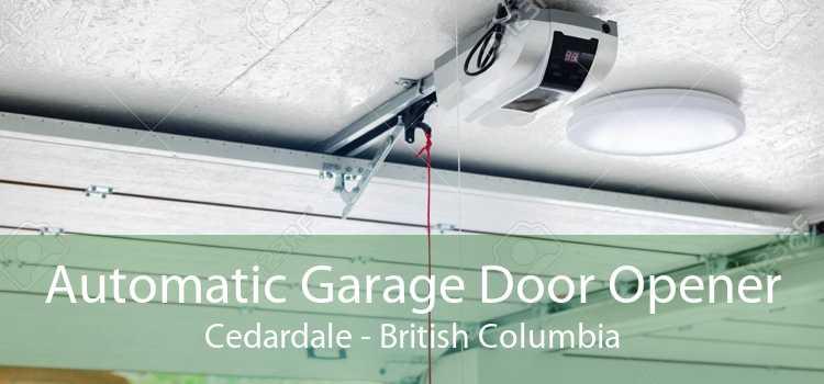 Automatic Garage Door Opener Cedardale - British Columbia