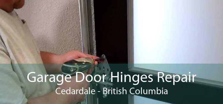 Garage Door Hinges Repair Cedardale - British Columbia