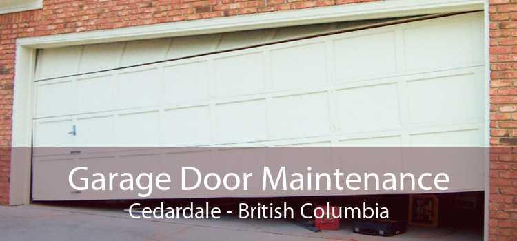 Garage Door Maintenance Cedardale - British Columbia