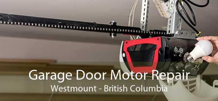 Garage Door Motor Repair Westmount - British Columbia