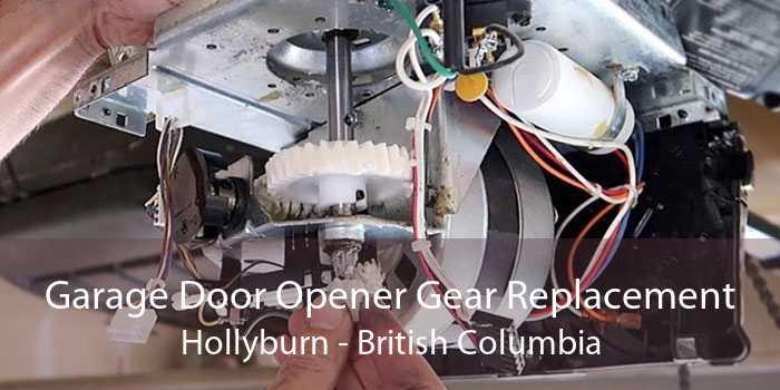 Garage Door Opener Gear Replacement Hollyburn - British Columbia