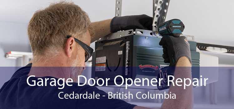 Garage Door Opener Repair Cedardale - British Columbia
