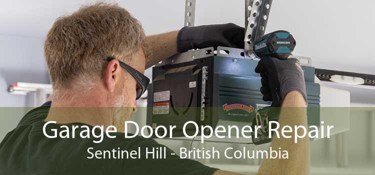 Garage Door Opener Repair Sentinel Hill - British Columbia