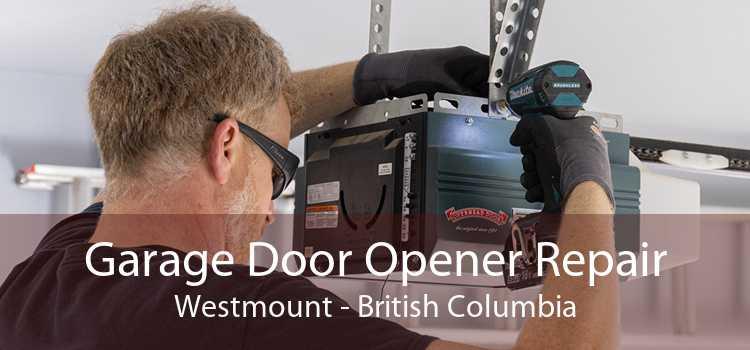 Garage Door Opener Repair Westmount - British Columbia