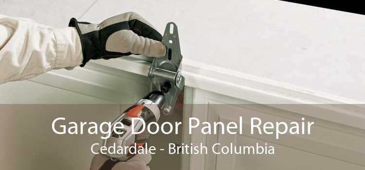 Garage Door Panel Repair Cedardale - British Columbia