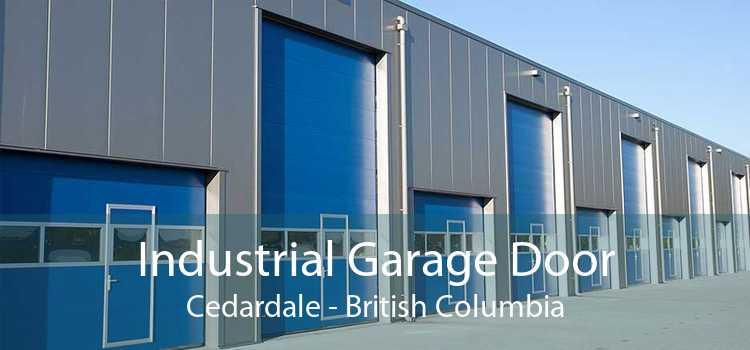 Industrial Garage Door Cedardale - British Columbia
