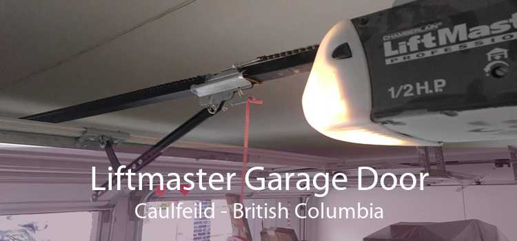Liftmaster Garage Door Caulfeild - British Columbia
