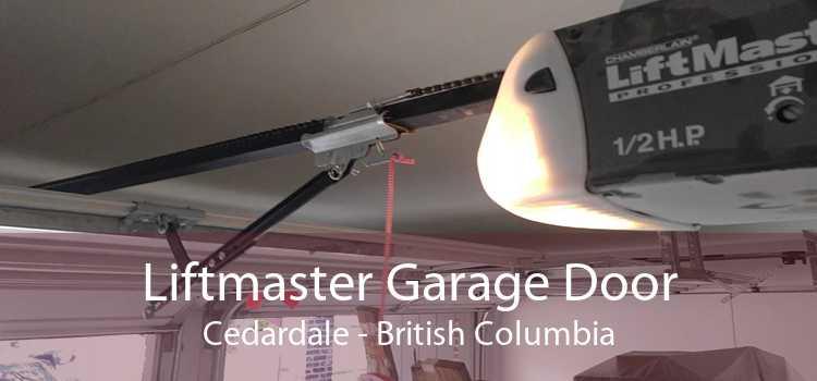 Liftmaster Garage Door Cedardale - British Columbia