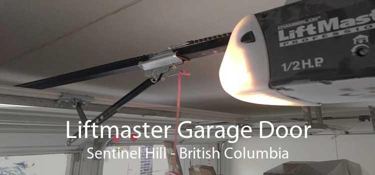 Liftmaster Garage Door Sentinel Hill - British Columbia